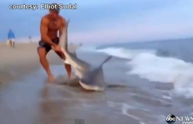 Nantucket Man Wrestles Shark Ashore