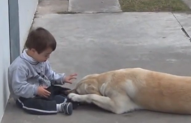 Lab Befriends Toddler With Down's Syndrome